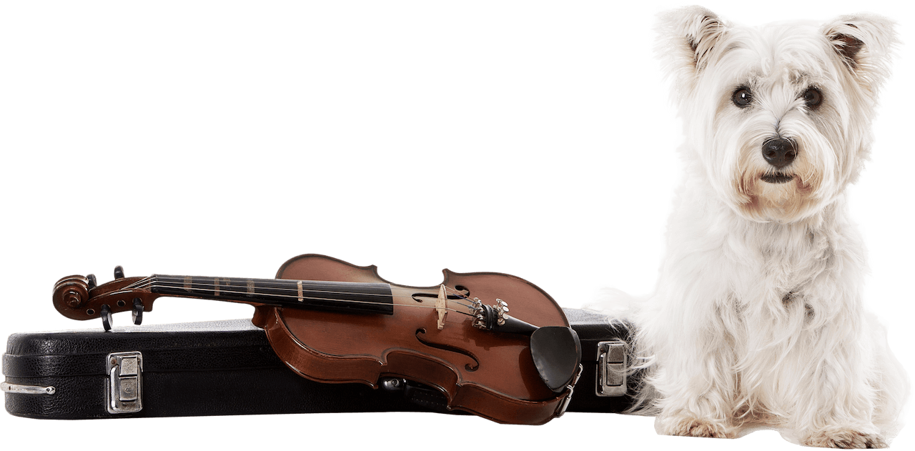 children music theory online